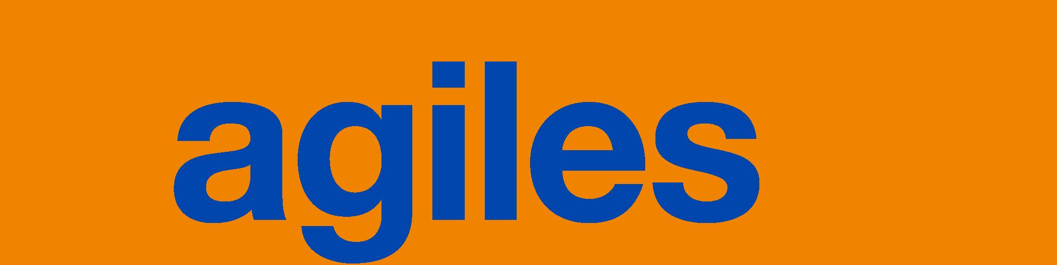 Logo agilesWorkflow 2017 WEB gr
